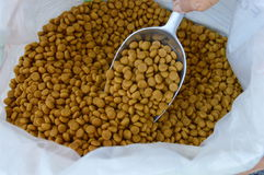 Dog food on the scoop Royalty Free Stock Images