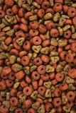 Dog food (Texture) Royalty Free Stock Photos