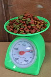 Dog food on weighting scale Stock Images
