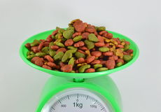 Dog food on weighting scale Royalty Free Stock Photos