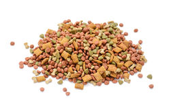 Dog food Stock Image