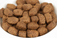 Dog food on white Royalty Free Stock Images