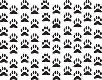 Dog foot print background Stock Photos