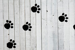 Dog Footprints Stock Photos