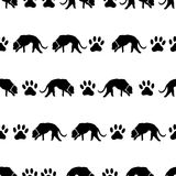 Dog and footprints black shadows silhouette in lines pattern eps10 Stock Image