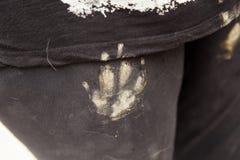 Dog footprints pants. Clay dog footprint in pants, animals and symbol Stock Photo