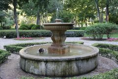 Dog in fountain by the heat. A dog taking a bath because of the heat it makes in Seville, south of Spain Stock Photography