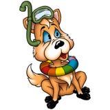 Dog-fox diver Royalty Free Stock Photos