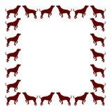 Dog frame Stock Image