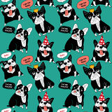 Dog French bulldog happy animals color seamless pattern. Stock Image