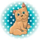 Dog French Bulldog. Illustration of a cute dog French Bulldog Royalty Free Stock Photo