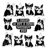 Dog French group bulldog home sign frame poster. Royalty Free Stock Photography