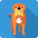 Dog French Mastiff icon flat design. Vector serious dog French Mastiff or Dogue de Bordeaux  icon flat design Stock Image