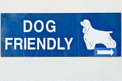 Dog friendly Royalty Free Stock Photos