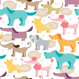 Dog friends vector seamless pattern. Pets and traces colorful background in childish style Stock Photography