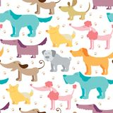 Dog friends vector seamless pattern. Pets and traces colorful background in childish style Stock Images