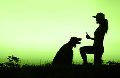 Dog friendship in green Royalty Free Stock Images