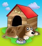 dog front kennel resting Стоковая Фотография