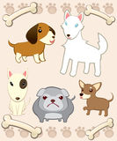 Dog Gang. All the cute dog is here to play and light up your day Royalty Free Stock Photo