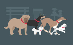 Dog gang. The dogs in breeds and acts Royalty Free Stock Images
