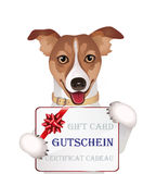 Dog with gift card Stock Photo