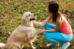 Dog gives paw to girl Stock Photography