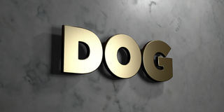 Dog - Gold sign mounted on glossy marble wall  - 3D rendered royalty free stock illustration. This image can be used for an online website banner ad or a print Royalty Free Stock Photos