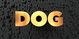 Dog - Gold text on black background - 3D rendered royalty free stock picture Royalty Free Stock Photo