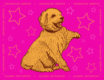 Dog Golden Retriever on a pink ornamental background. With the signature Stock Images