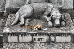 Dog grave Stock Images