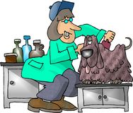 Dog Groomer. This illustration that I created depicts a woman shaving a shaggy dog Stock Images