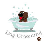 Dog Grooming stock illustration