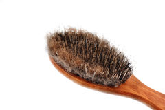 Dog grooming brush Royalty Free Stock Image