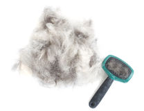 Dog Grooming Brush and Hair Royalty Free Stock Photography