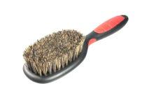 Dog grooming brush Stock Photo