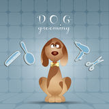Dog grooming Stock Photography