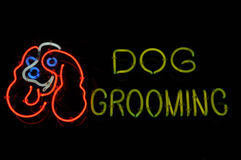 Dog Grooming Neon Sign. Dog Grooming Neon Light Sign at Night stock photos