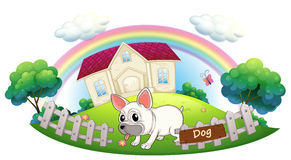 A dog guarding a house. Illustration of a dog guarding a house on a white background Royalty Free Stock Photography