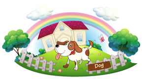 A dog guarding a house. Illustration of a dog guarding a house on a white background Stock Photography