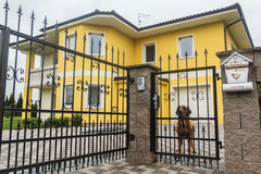 Dog guarding the private territory. With yellow house Stock Photography