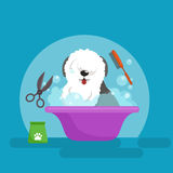 Dog hair hygiene. Vector Illustration Set, Pet Grooming and care Royalty Free Stock Photography