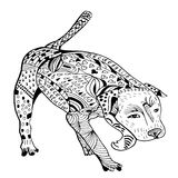 Dog Hand drawn sketched  illustration. Doodle pitbull graphic with ornate pattern. Design Isolated on white Royalty Free Stock Photos