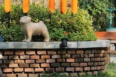 A dog Stock Photo