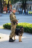 Dog handler guarding public safety Stock Images