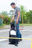 Dog handler at work. Obedience royalty free stock photos