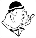DOG IN THE HAT. Abstract black and white image of a bulldog wearing a hat that smokes a cigar Royalty Free Stock Photo