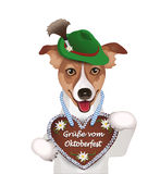 Dog with hat and gingerbread heart, Royalty Free Stock Photography