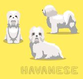 Dog Havanese Cartoon Vector Illustration. Animal Character EPS10 File Format stock illustration