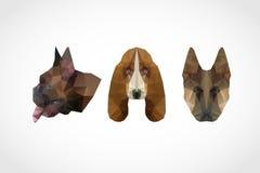Dog head abstract set Stock Photos