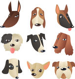 Dog head collection Stock Image